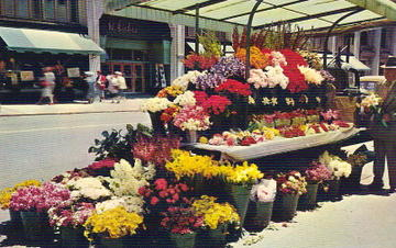 San_francisco_flower_stand