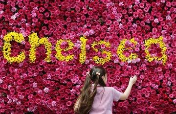 Chelseaflowers_671172n