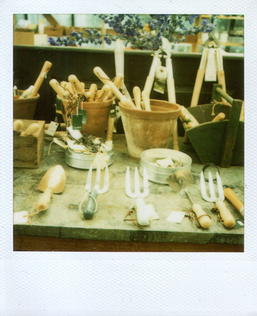 Petersham_polaroid_2