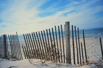 Beach_cape_cod