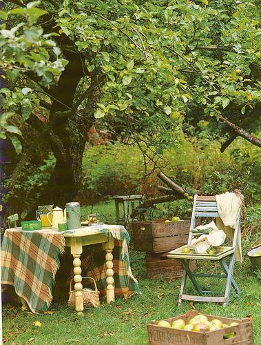 Tartan picnic