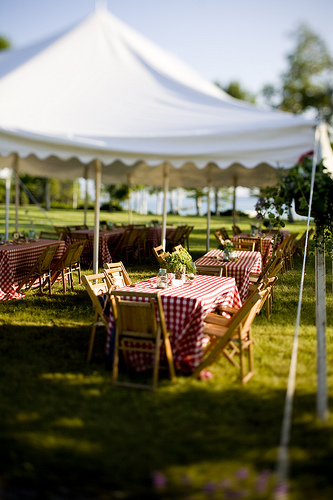 Rehearsal-dinner-gingham-simple-wedding-outdoor