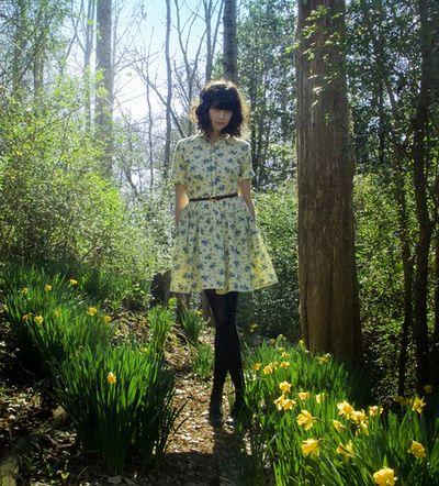Libemarlene daffodils