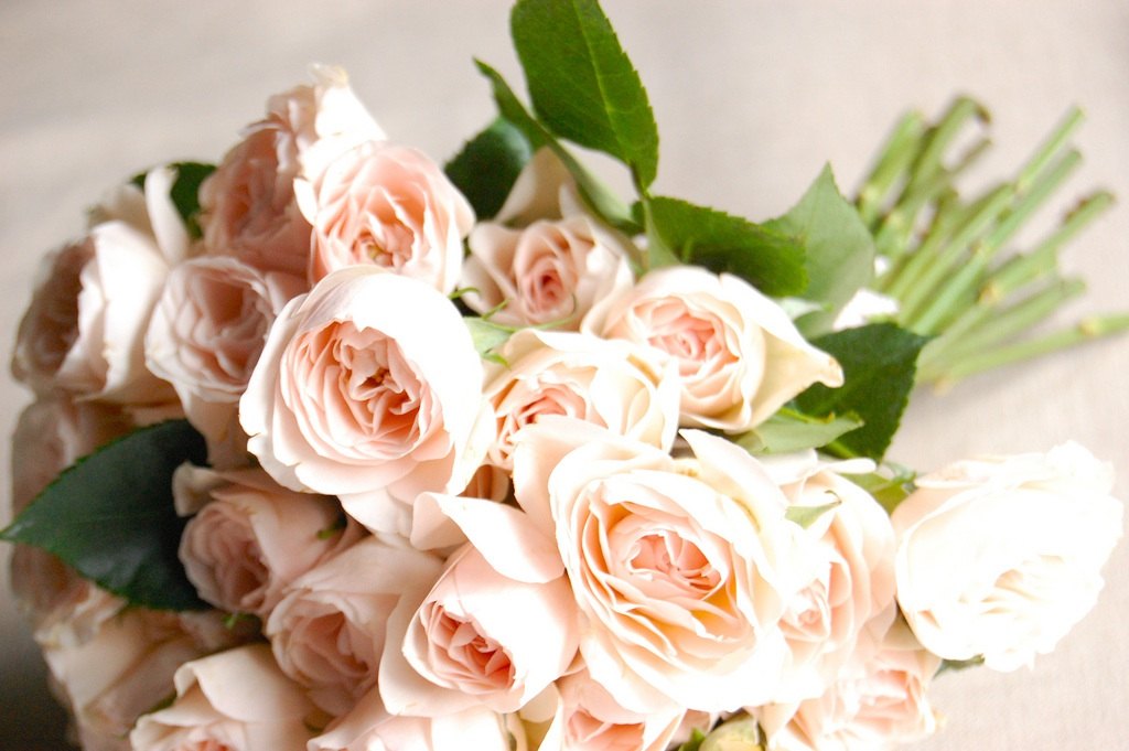 wedding diy garden rose bouquet frolic