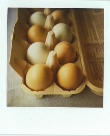 Fresh_easter_farm_eggs