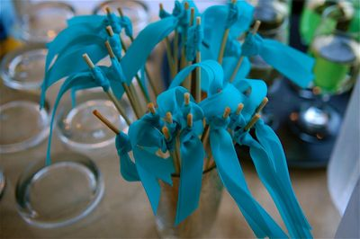 Garden-wedding-ribbon-wands