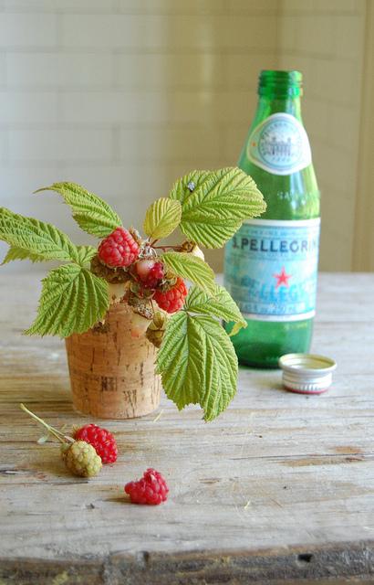 Raspberries-summer