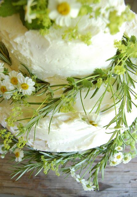 Herbs-cake