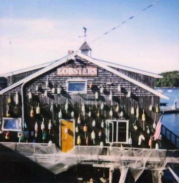 Maine pola 6