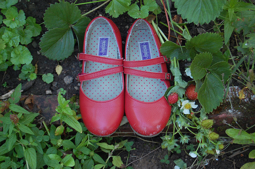 Frolic-strawberries-red-shoes
