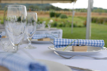 country-wedding-gingham