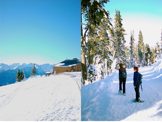 Hurricane ridge 1