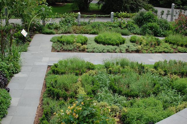 Brooklyn botanic garden brooklyn