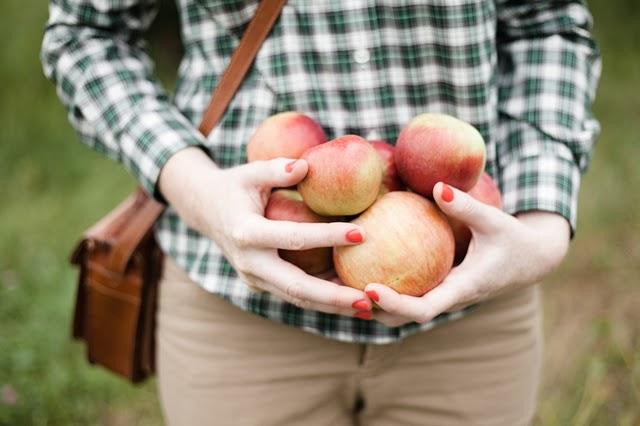 Apple Orchard-31