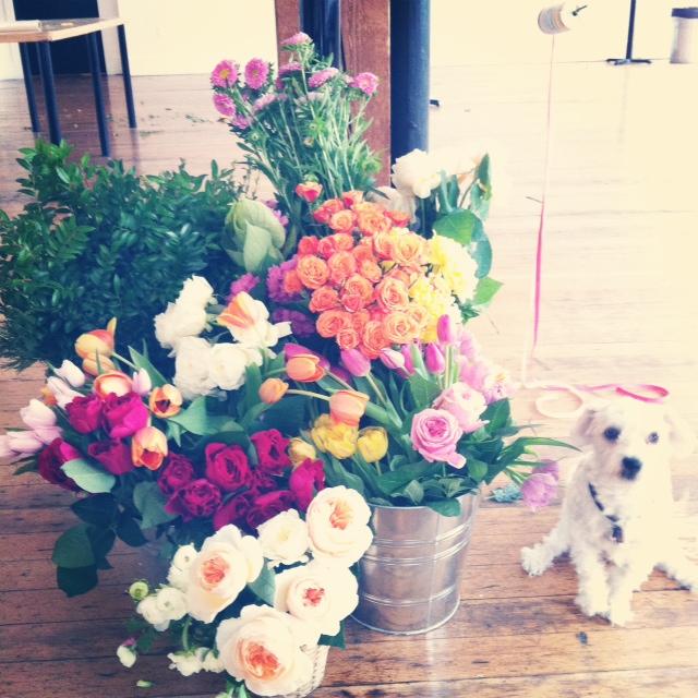 Flower shop ace