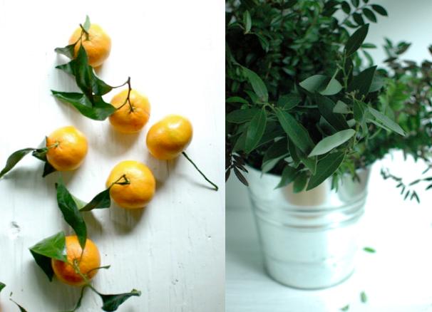 Orangerie one