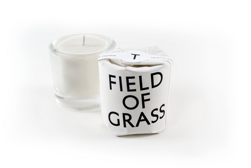Tatine-tisane-field-of-grass