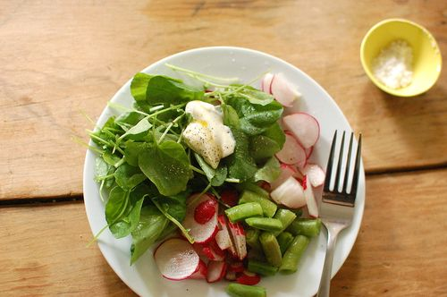 spring salad radishes