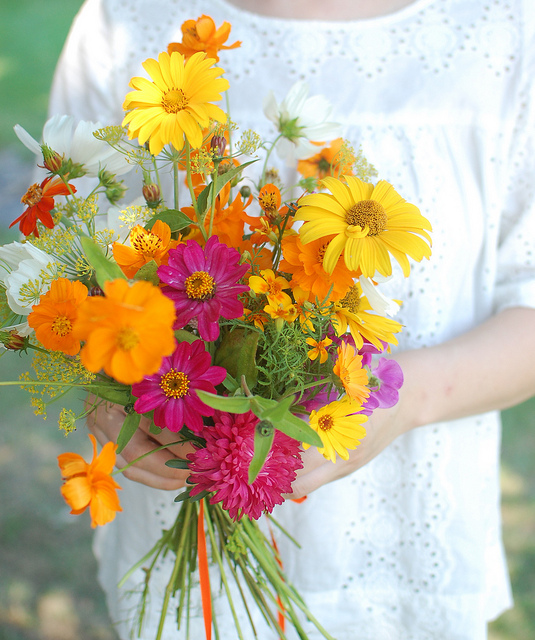 Cutting garden bouquet zinnia