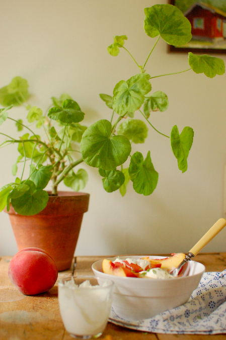Peaches creme fraiche kitchen table