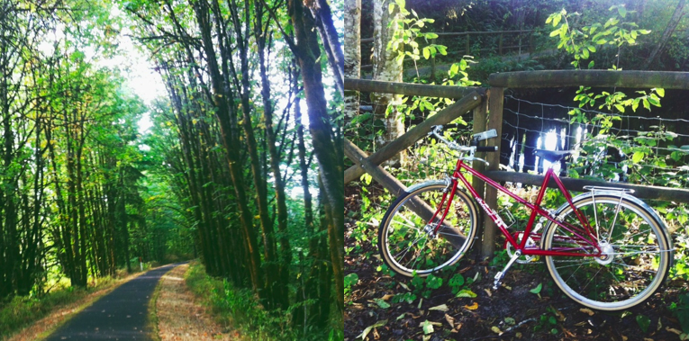 Banks vernonia trail