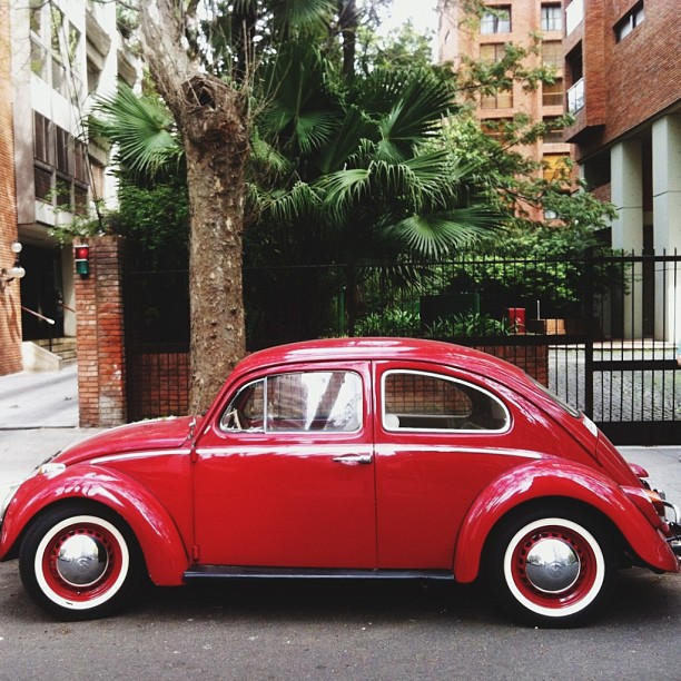 Vw bug buenos aires