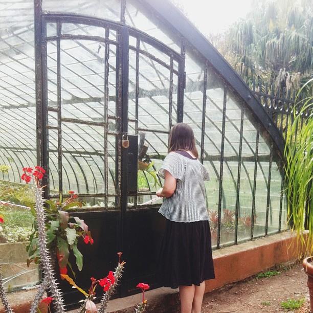 Buenos aires greenhouse botanical garden