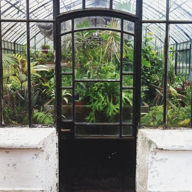 Greenhouse door buenos aires