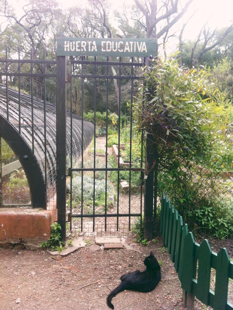 Cata bueno aires botanical garden