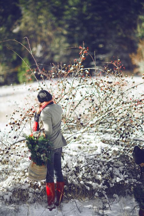 The foraged wreath class