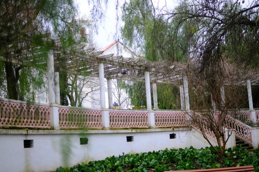 beja public garden