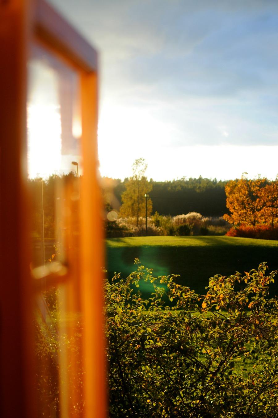 gotland window