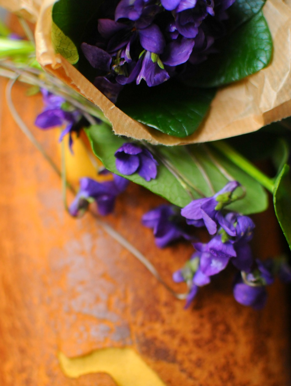 fresh cut violets lisbon