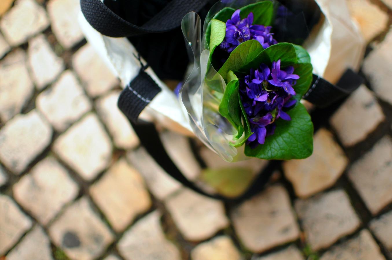violets in bag