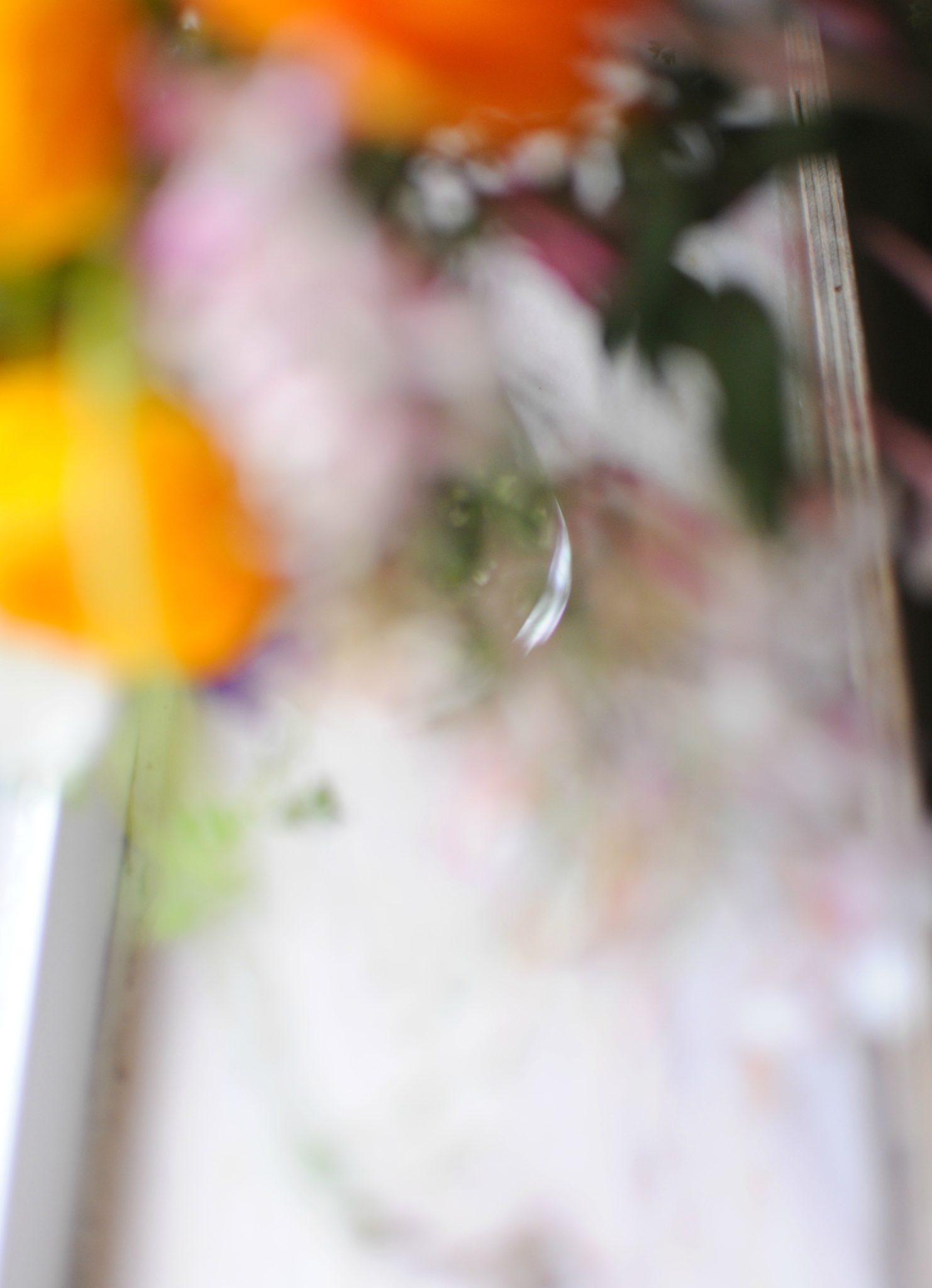 flowers blur