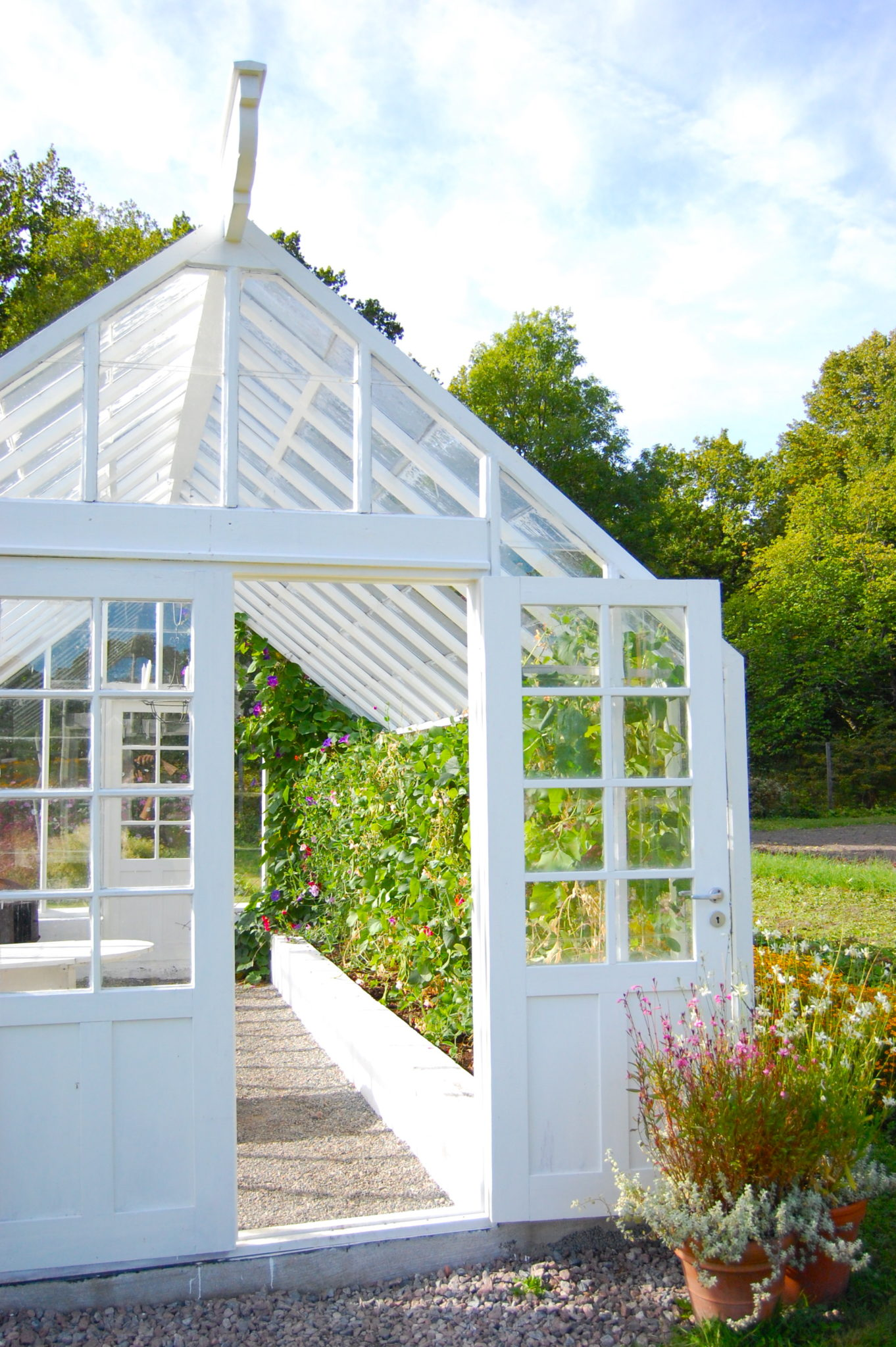 sweden-greenhouse
