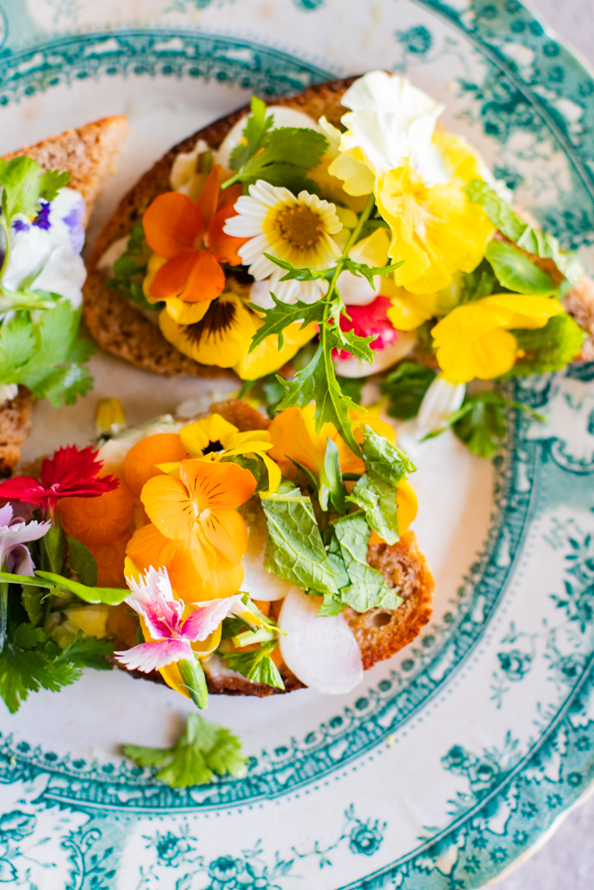 Edible Flower Tartines